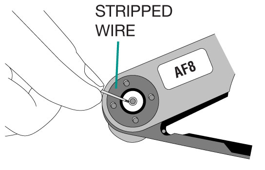 Stripped Wire